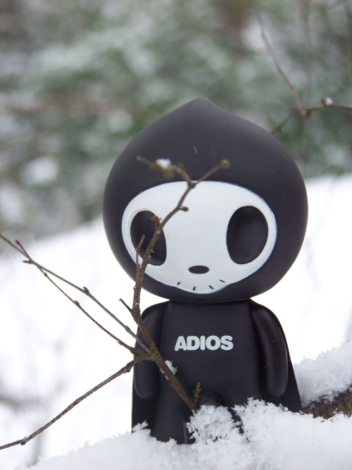 Adios in the snow